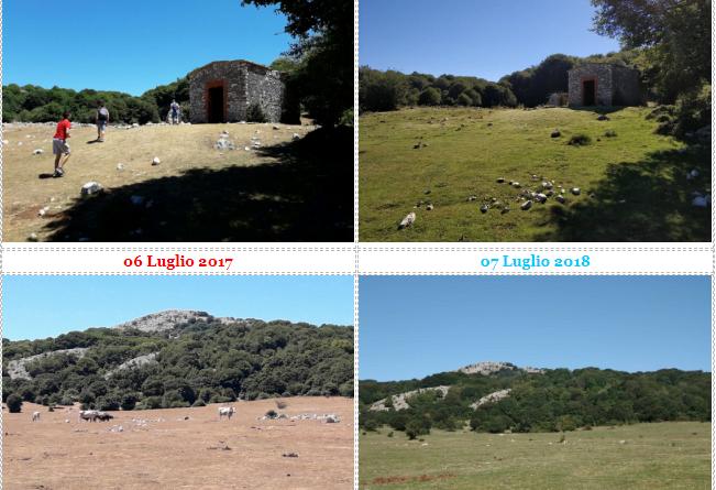 Gli effetti delle piogge sulla vegetazione Monte Gennaro un anno dopo