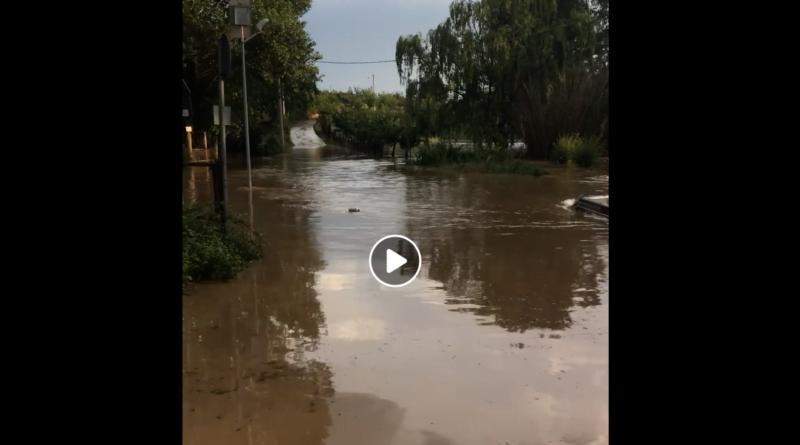 Allagamenti e danni a causa della pioggia la situazione a Montelibretti