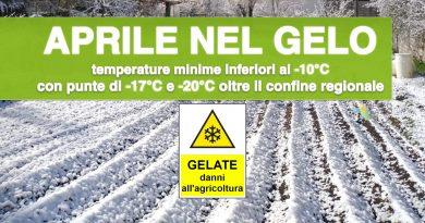 CROLLO TERMICO di APRILE: raggiunti i -10°C con danni all'agricoltura