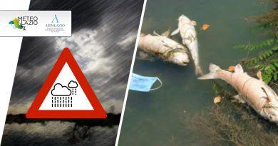 Primi risultati dell'analisi ARPA dopo la moria di pesci nel FIUME TEVERE a ROMA